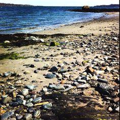 Simonton Cove, Willard Beach, South Portland, Maine. ©2012 Laurie Spugnardi