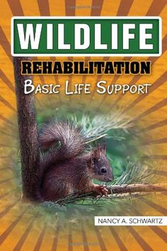 18us wildlife rehabilitation basic life support by nancy swartz. Resume Example. Resume CV Cover Letter
