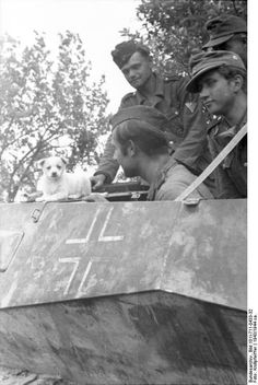 "German soldiers in a SdKfz. 250 halftrack vehicle playing with a puppy, Ukraine, circa 1943-1944. Note the ""modern"" haircut of the soldier closest to the camera, result of not having a barber attached to the unit!"