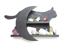 Cat and the Moon Crystal Shelf