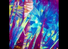 Photograph of White Wine as viewed under a microscope