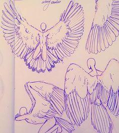 Wing studies.