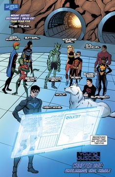 Young Justice Team ~ I'm so in love with Superboy, it isn't even funny.