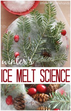 Winter Nature Ice Melt Science Activity