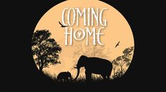 Alexandria, May 6: Coming Home