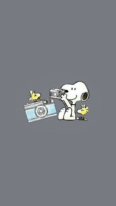 Wallpaper Iphone Disney, Cute Disney Wallpaper, Cute Wallpaper Backgrounds, Cute Cartoon Wallpapers, Charlie Brown Y Snoopy, Snoopy Love, Snoopy And Woodstock, Snoopy Images, Snoopy Pictures