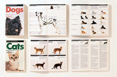 Cats and Dogs Guide, book design, Massimo Vignelli, 1985 Print Layout, Layout Design, Massimo Vignelli, Buch Design, Dog Id, Publication Design, Editorial Layout, Field Guide, Guide Book