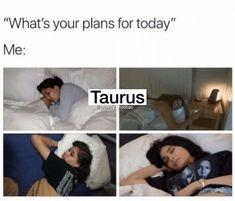 Taurus Funny, Taurus Memes, Taurus Quotes, Zodiac Memes, Taurus Facts, Zodiac Facts, Zodiac Quotes, Petty Quotes, Taurus And Cancer