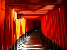 mysterious, Fushimi-Inari, Kyoto, Japan