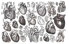 I love images of hearts ever since I spent years as a cardiac nurse