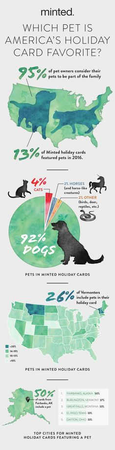 Which pet is America's christmas holiday card favorite? We finally have the answer! Discover who rules the holiday card, learn how to shoot the puuurfect pet photo, and see our most adorable pet Christmas Cards from 2016!