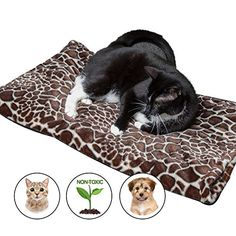 Thermal Warming Pad for Dogs and Cats - XL Couch Protecti... https://www.amazon.com/dp/B01C4OG9AO/ref=cm_sw_r_pi_dp_x_Y1LYzbKVZ6ANG