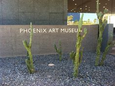 Phoenix Art Museum in Phoenix, AZ