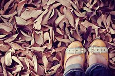The snow is gone, but it took down all the leaves with it.     women shoes