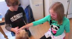 These kids were doing their homework when a surprise shocked them to tears   http://spiritbath.com/2014/09/19/kids-homework-surprise-shocked-tears/