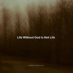 "Life without The Lord, the Giver of Life, is not life. This is why the Sacraments matter. This is why the Church matters. Because it is through the ministry of His Church, through the Sacraments, that God gives us life: He doesn't just bring us into existence, and then off we pop. In order to live, we do far more than just merely exist. St. Irenaeus one wrote that ""the Glory of God is Man fully alive""-- ""Gloria Dei Homo vivens."""