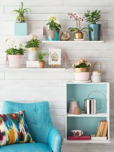Pretty much love everything about this picture - the styling of the shelves, the gold on the flower pots, the color on the inside of the shelves and all of the color!