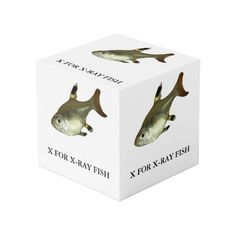 X is for X-Ray Fish Cube Photo Cubes, Images And Words, Cleaning Wipes, Bookends, Fish, Display, Create, Prints, Color