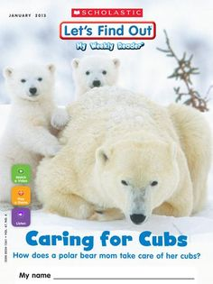 Caring for Cubs/Video:Walk in the Arctic/ Game:Polar Bear Tree Map