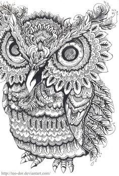 "Képtalálat a következőre: ""owl coloring pages for adults"""