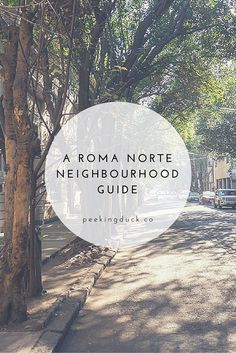 A guide to Roma Norte, the best area in Mexico Cit – where to eat, things to do and where to stay.