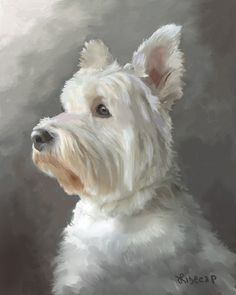 Who has painted a white poodle? May I see it? - WetCanvas