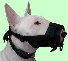 Adjustable Nylon Dog Grooming Black Muzzle No Bite size Medium Retriever Spaniel Brittany Collie Dog Muzzle, Cat Harness, Best Dog Training, Dog Diapers, Dog Travel, Dog Memorial, Dog Agility, Dog Hoodie, Outdoor Dog