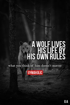 """gymaaholic: """" A Wolf Lives his life by his own rules. What you think of him doesn't matter. http://www.gymaholic.co """""""