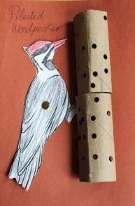 Preschool Arts And Crafts, Preschool Lesson Plans, Bird Crafts, Nature Crafts, Forest Animals, Woodland Animals, Daycare Themes, Nature Activities, Bird Theme