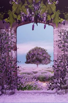45 Purple Background Images | Cuded