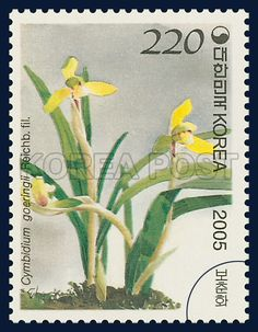Korean Orchid Series (5th), Cymbidium goeringii, Plants, Green, Yellow, 2005 11 11, 한국의 난초 시리즈(다섯 번째 묶음), 2005년 11월 11일, 2464, 보춘화, postage 우표