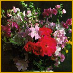 #Schnittblumenpflege, die richtige Pflege der #Schnittblumen.  Schnittblumenpflege, Schnittblumen sind von unterschiedlicher Haltbarkeit, manche bleiben nur einige Tage lang frisch, obwohl sie richtig behandelt werden.  http://www.gartenschlumpf.de/schnittblumenpflege/