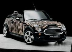 Mini- convertible or Zebra?  Watch out for Jaguars! Tile by Bisazza