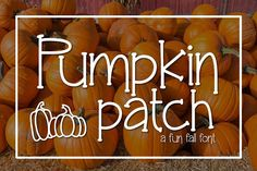 Pumpkin Patch a Fun Serif Font Kitaleigh Other Fonts Business Brochure, Business Card Logo, Fall Fonts, Great Doodle, Commercial Use Fonts, Cricut Fonts, Beautiful Fonts, Monogram Fonts, Halloween Design