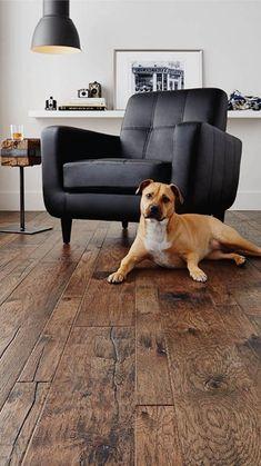 Distressed Hardwood Floors, Dark Wood Floors, Rustic Wood Floors, Hickory Wood Floors, Scraped Wood Floors, Natural Wood Flooring, Wood Plank Flooring, Modern Flooring, Engineered Hardwood Flooring