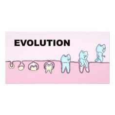 The evolution of the tooth's life. #babyteeth #dentist #dental #dentistry