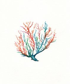 No 5 Sea Coral / Coral/ Teal/ Aqua/ Orange / by kellybermudez