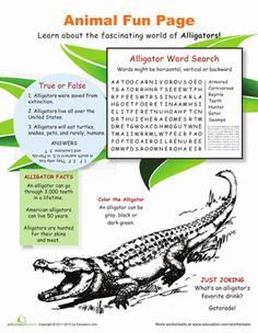 Fourth Grade Life Science Worksheets: All About Alligators