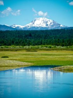 The Lake Almanor Basin: Where the Sierras meet the Cascades. Come together with the mountains.
