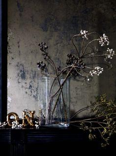 This is J | flora | thisisj.com | floral inspiration | © Debi Treloar