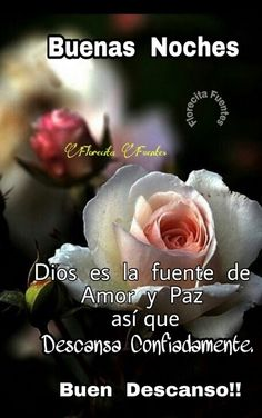 images in 2019 Good Night In Spanish, Have A Good Night, God Is Good, Good Night Quotes, Good Night Messages, Birthday In Heaven, Good Night Blessings, Good Night Greetings, Happy Week