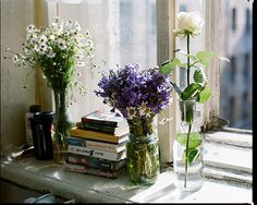 Window sill decor decoration bedroom ideas best on plants indoor succulents and decorations how often to . Cut Flowers, Fresh Flowers, Beautiful Flowers, Window Sill Decor, Decoration Inspiration, Jolie Photo, Flower Power, Planting Flowers, Flower Arrangements