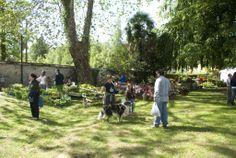 Evento florovivaistico Menta e Rosmarino 2013. Parco della villa