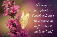 He promised that you will not be alone Romans 8 37, John 16 33, Overcome The World, I Have Spoken, Never Leave You, Good Cheer, Might Have, I Promise, Drum