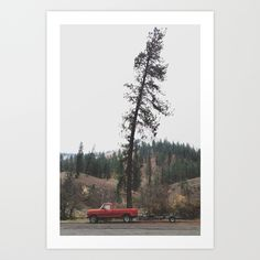 Tree Truck Art Print by Kevin Russ - $20.00