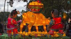 These are handmade Chinese lanterns!        Video. Auckland Lantern Festival - Celebrate Chinese New Year in Auckland Domain. p.I ... 22  PHOTOS        ... Stunning on-stage performances of traditional and contemporary Chinese culture including martial arts, dance and live music from international performers. ...And at the final - great fireworks!        Posted from:          http://softfern.com/NewsDtls.aspx?id=1074&catgry=7            #photos of performers, #SoftFern videos, #Sergiy Bondar