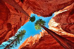 見ているだけで心洗われる!創業40年のロンリープラネットが贈る世界の絶景 – Lonely Planet's Our Beautiful World   STYLE4 Design