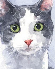 David Scheirer ~ Cat portrait ★ More on #cats - Get Ozzi Cat Magazine here >> http://OzziCat.com.au ★