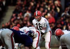 Cleveland Browns quarterback Bill Nelsen (16) at the line of scrimmage against the New York Giants at Yankee Stadium.