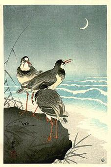 """Plovers by the Seaside, 1926  by Ohara Koson (1877-1945): Japanese Painter Printmaker late 19th early 20th centuries; part of shin-hanga (""""new prints"""") movement. http://www.hanga.com/viewimage.cfm?ID=857"""